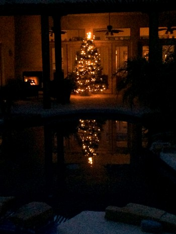 The terrace is the perfect place for a Christmas Tree!