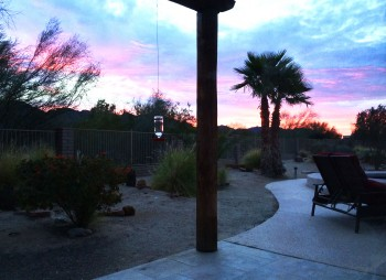 Bird feeders in the sunrise